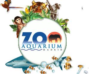 Visita Zoo-Aquarium Madrid