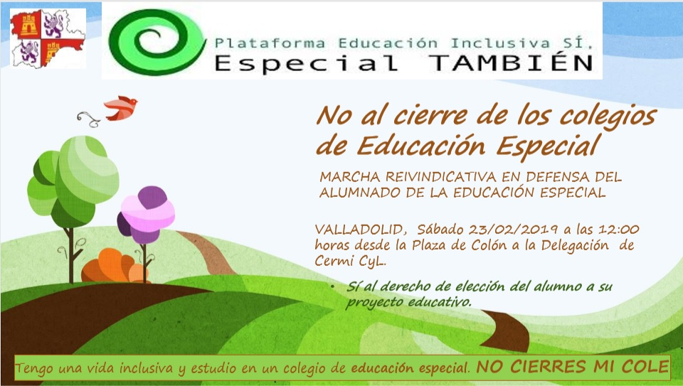 Marcha reivindicativa en defensa de la educación especial 23 febrero Valladolid